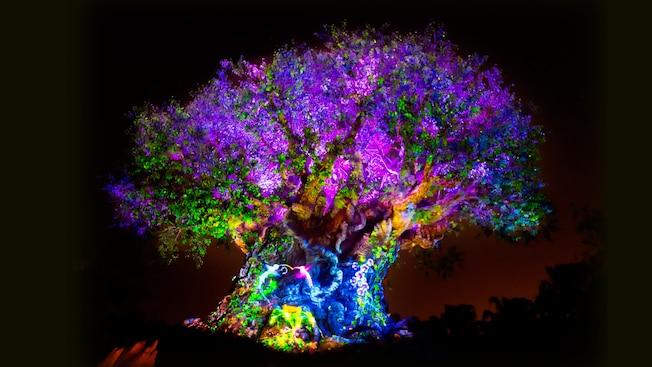tree-of-life-04.jpg